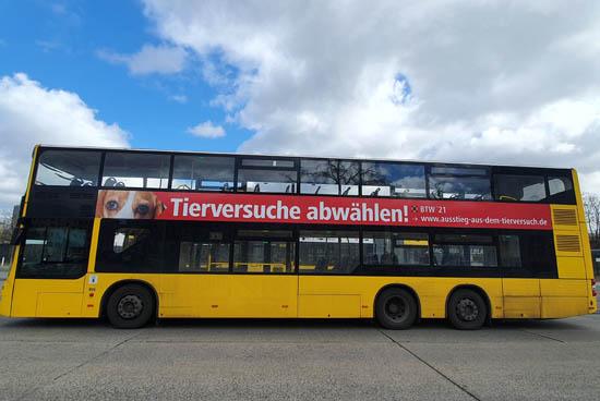 bus_02.jpg